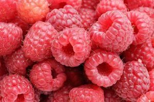 1024px-raspberries05